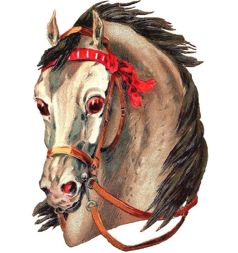 картинка головы коня могут