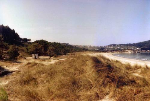 Area Longa