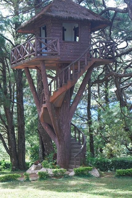 Tree House On The Grounds Of The Philippine Military Academy Tree House Woodland House Cool Tree Houses