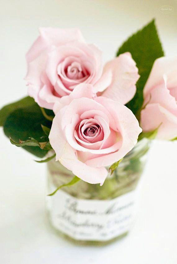 خاص بملحقات التصميم On Twitter In 2021 Flower Arrangements Flowers Photography Pretty Flowers