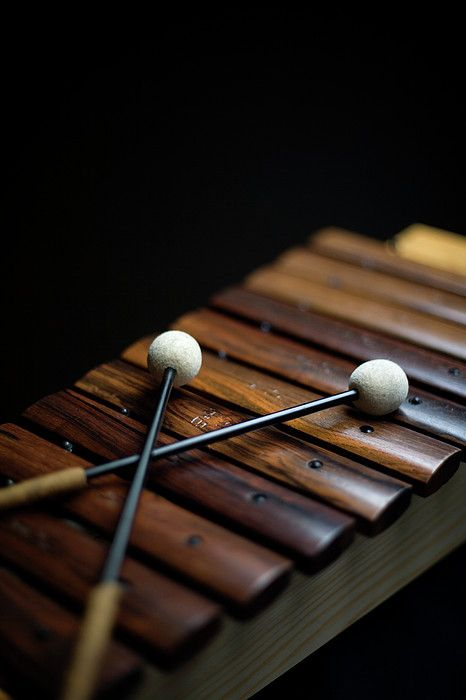 A Xylophone By Studio Blond Music Instruments Musical Instruments Xylophone