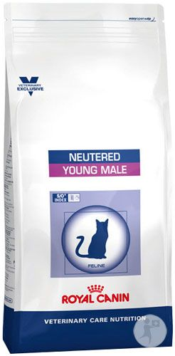 Feeding Your Cat Cat Nutrition Veterinary Care Cat Pet Supplies