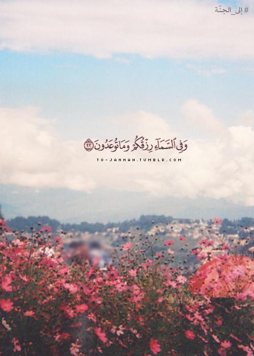 و ف ي الس م اء ر ز ق ك م و م ا ت وع د ون Quran Quotes Inspirational Quran Quotes Love Quran Quotes