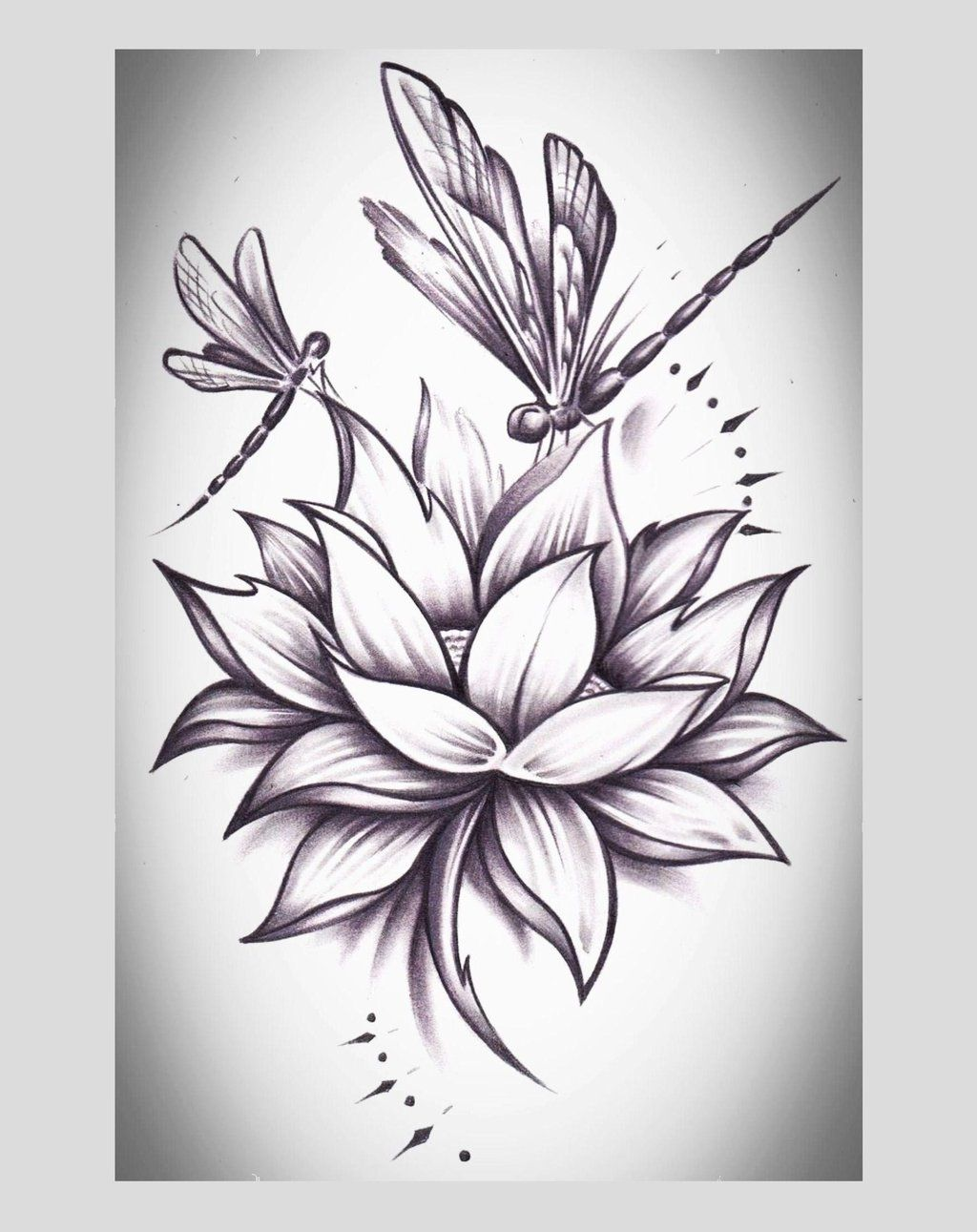 Dragonflys Lotus On Deviantart I Love The Lotus Could Do Without