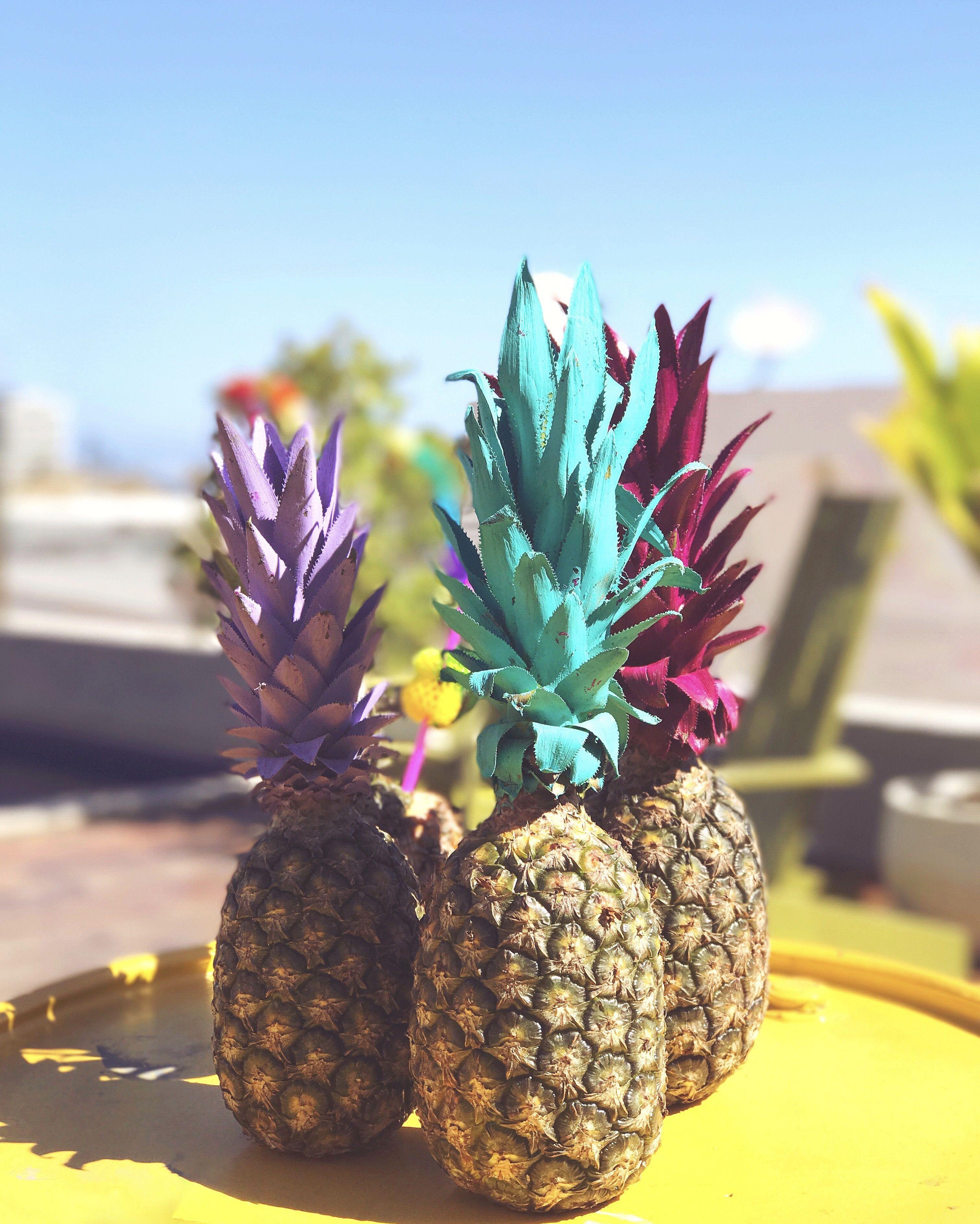Abacaxis Coloridos Inspira O Para Festa De Ver O Colorful
