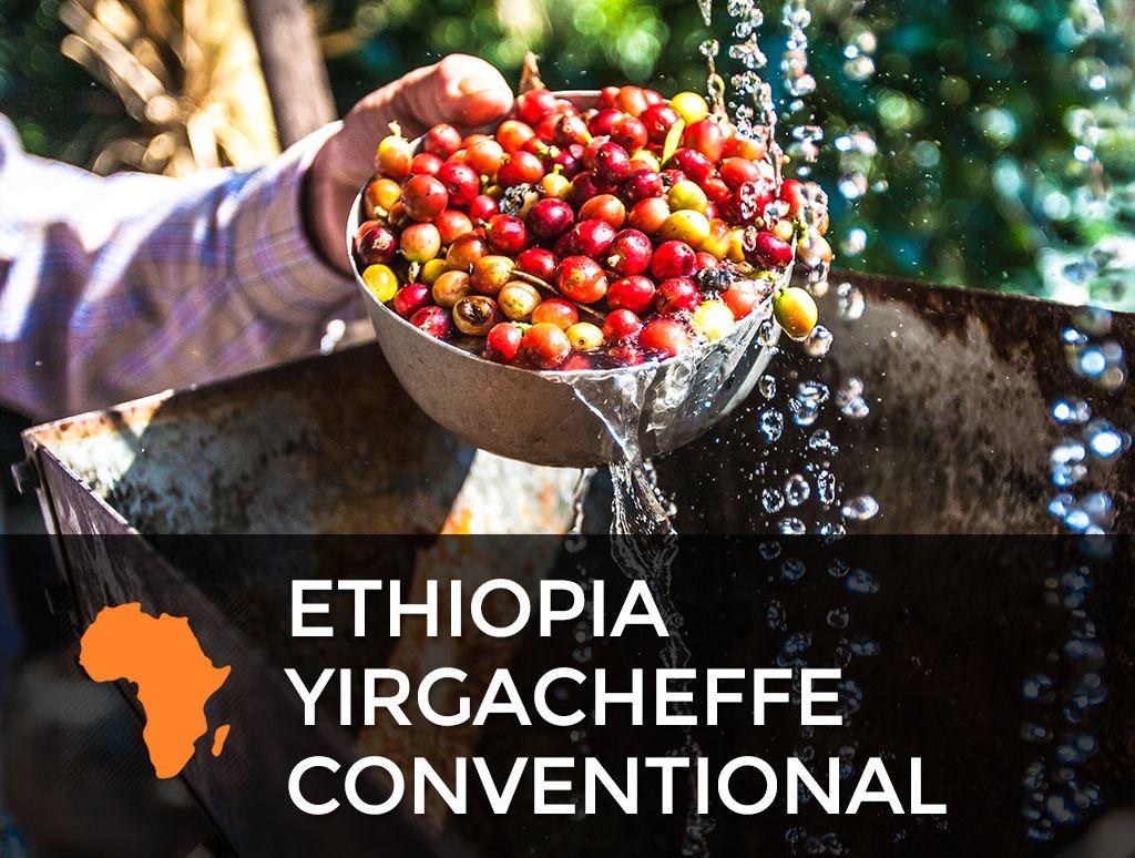 Ethiopia yirgacheffe coffee beans for sale sonofresco