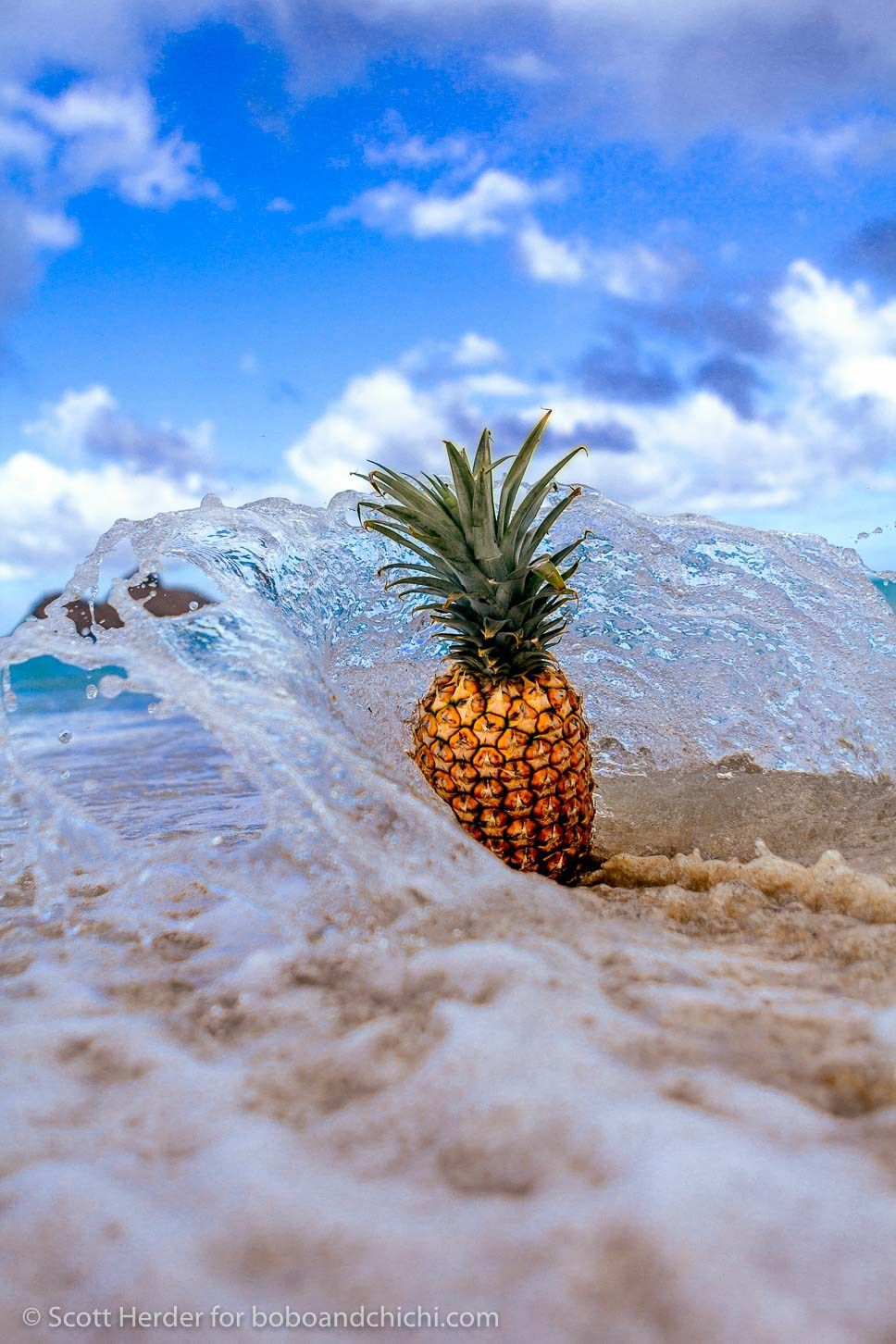 Hawaii's Famous Pineapples