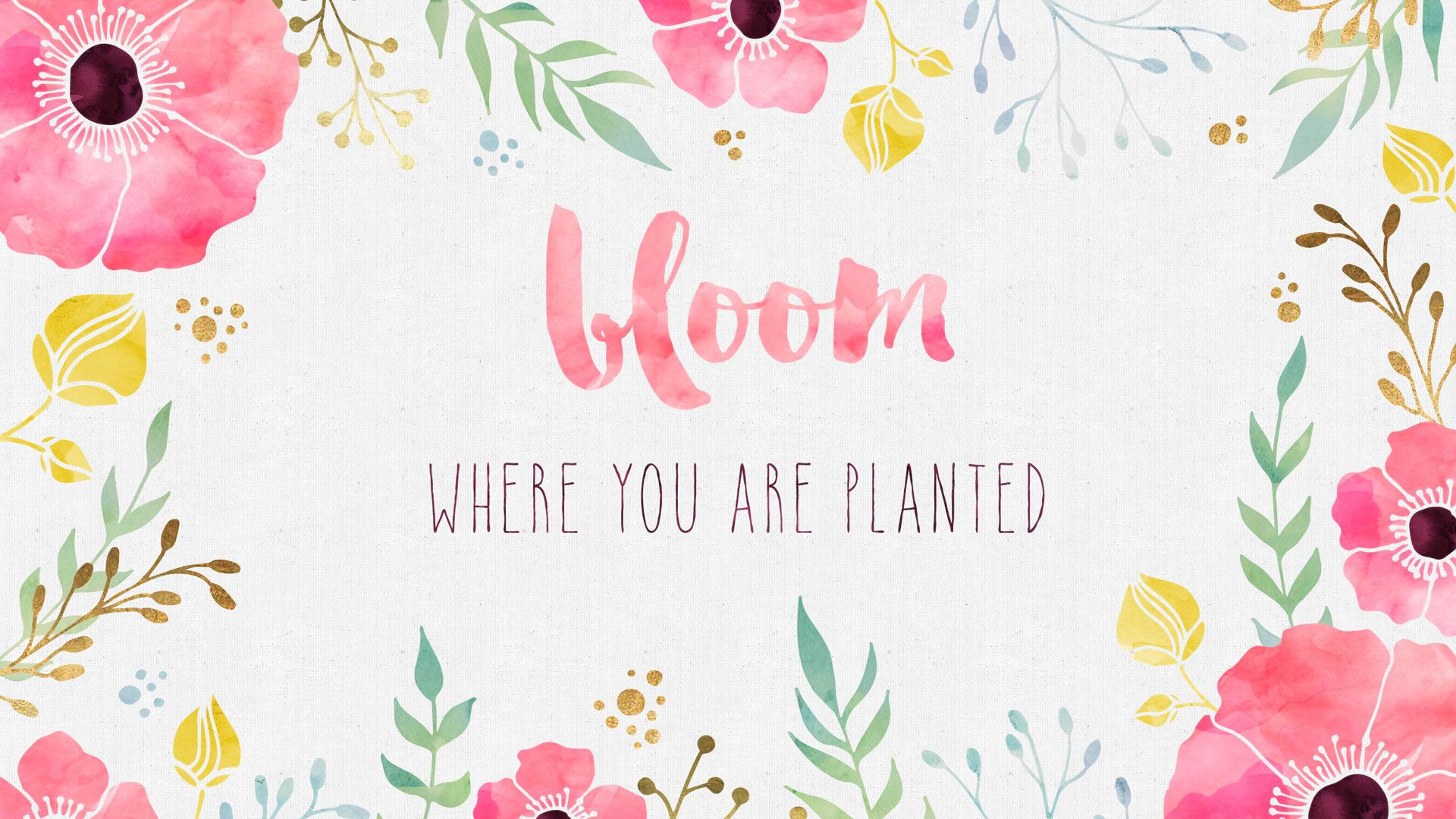 Free Desktop Wallpaper - Bloom Where you are Planted