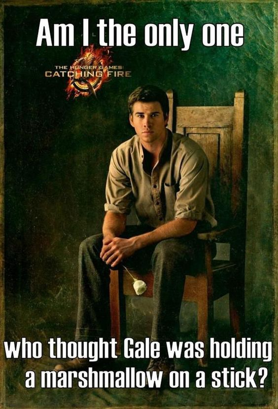 94878538e34df2f4209c259a104bcce1 best 25 hunger games memes hunger games memes, gaming memes and