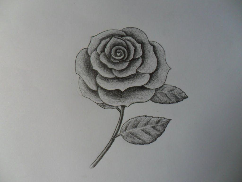 Como dibujar una Rosa, improvisándola.