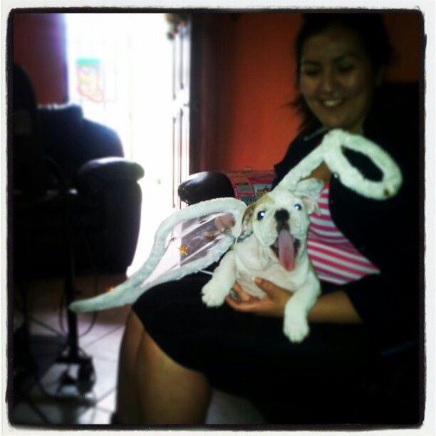 Mi pequeño angel!!!