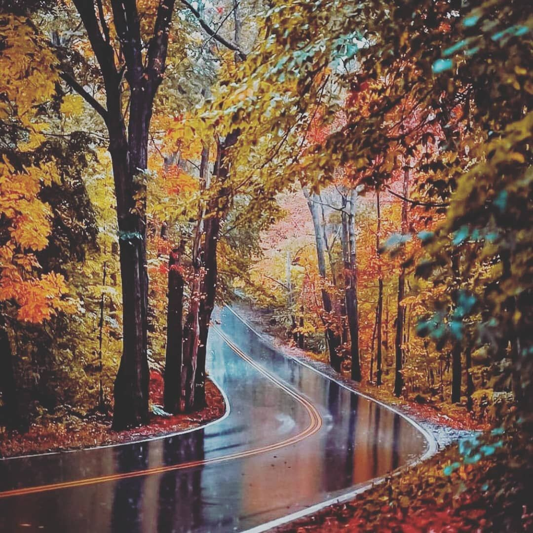 #Repost @travelflashy @download.ins Follow @natureflashy ------------------------------------------ Follow @travelflashy for more ------------------------------------------ 📸: @new_englander #naturephotography #travelreflective #photographyislife #photooftheday #photographyeveryday #photography📷 #photographysouls #photographylover #travel #travelphotography #nature #landscapephotography #landscape #photographylovers #nature_perfection #photography #woburn