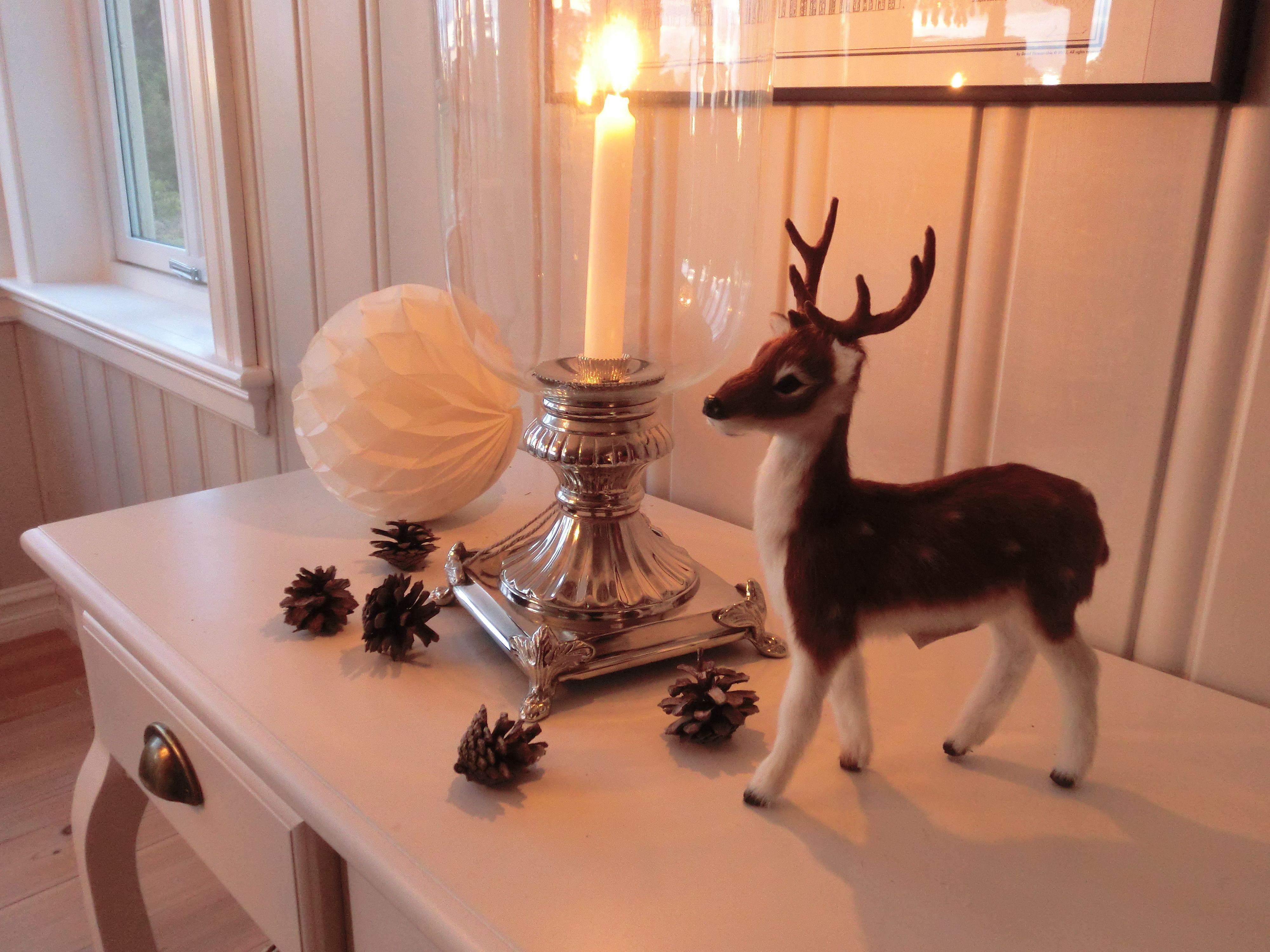 deer _ interior
