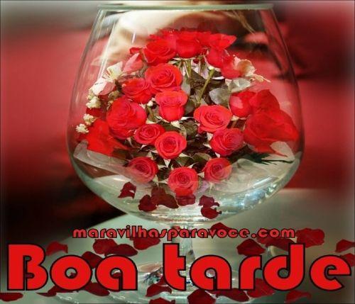 """""""Eu colhi rosas da alma para doar a você, pétalas perfumadas de paz e amor e se conseguir visualiza-las estão a te sorrir por mim"""". (Sirlei L. Passolongo)"""