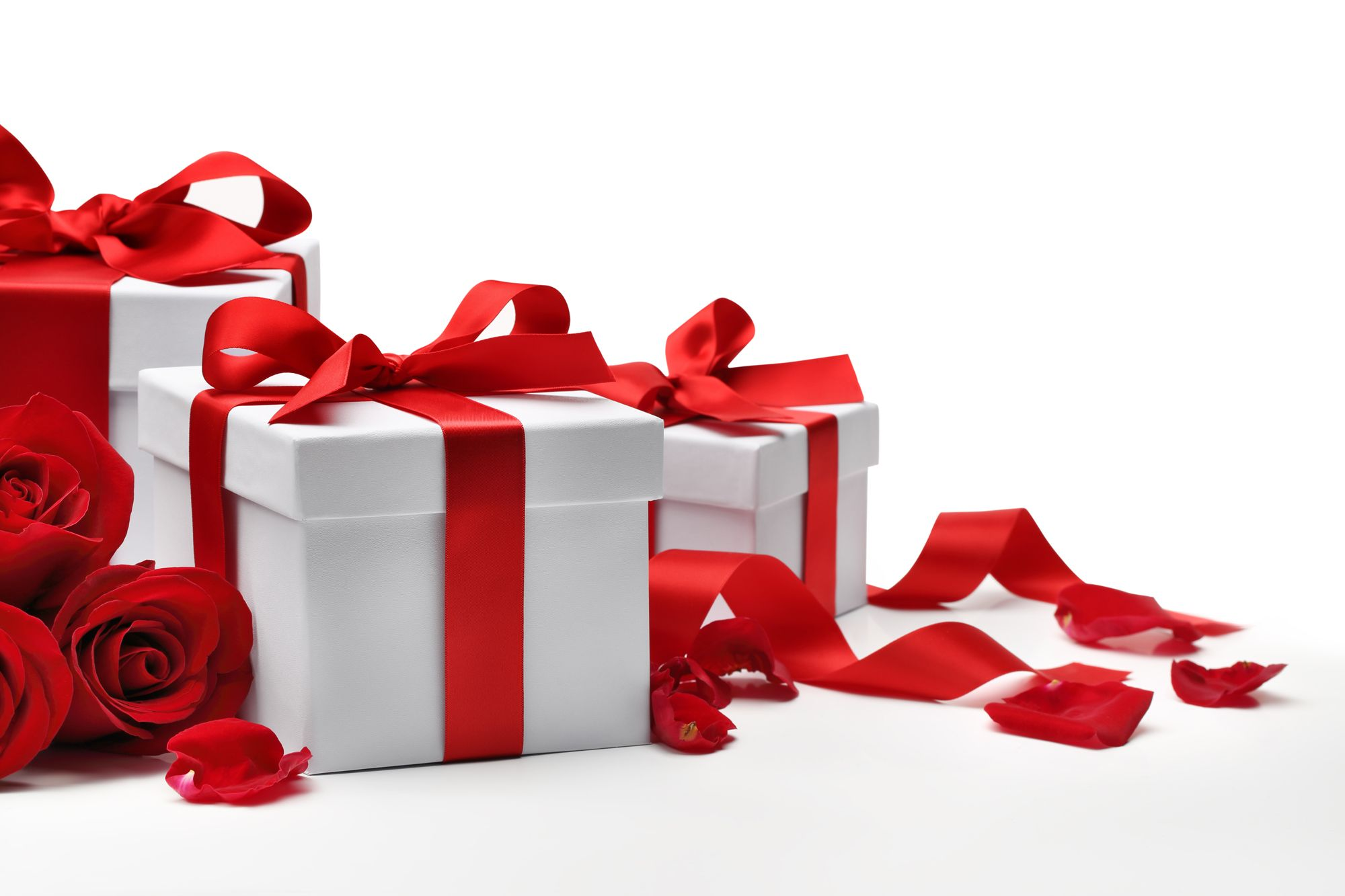 Закачать подарочки открытки, про котов самые