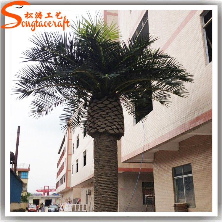 St Cp03 Canary Jujube Tree Artificial Date Palm Tree Beach Sightseeing Palm Trees Buy Canary Jujube Tree Beach Landscape Coconut Tree Beach Sightseeing Palm T Jujube Tree Palm Trees Beach Beach Landscape