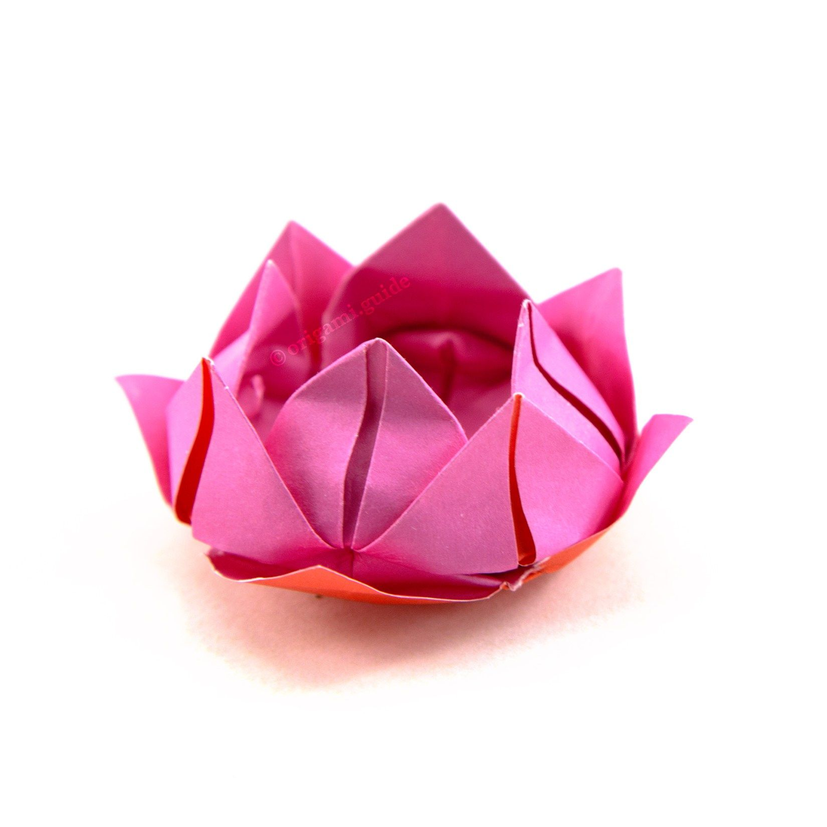 How to make an origami lotus flower pinterest lotus flower how to make an origami lotus flower origami guide izmirmasajfo