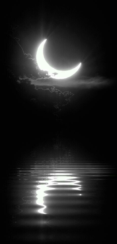 Half Moon Black White Reflection Beautiful Moon Moon Pictures Good Night Moon