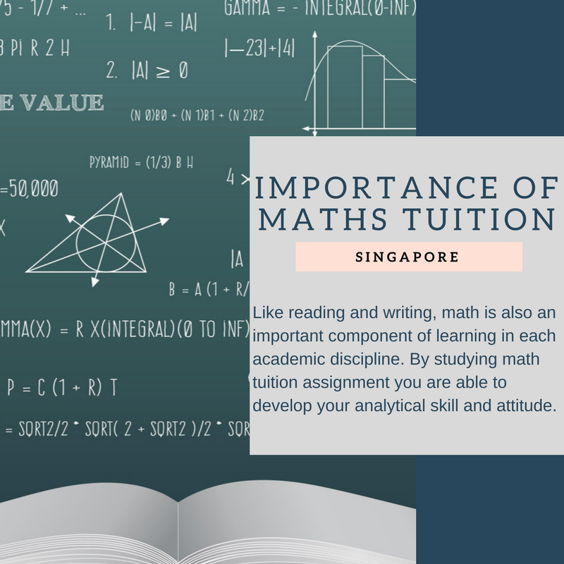 Maths Is An Important Component Of Learning Studying Maths With Tuition Assignment Will Enhance Your Analytical Skills In Tuition Maths Tuition Studying Math