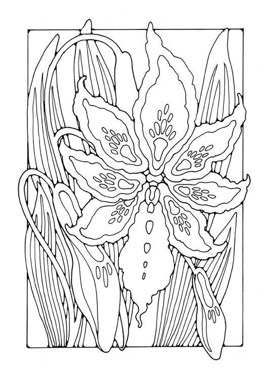 Coloring Page Lily Img 27781 Malvorlagen Blumen Mandalas Zum Ausmalen Malvorlagen