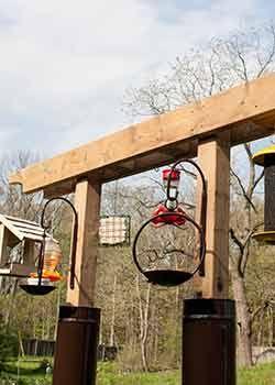 DIY rack to hang bird feeders