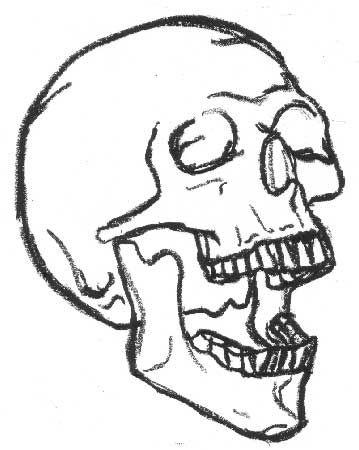 Skull Drawings Things I Wanna Draw Pinterest Easy Skull