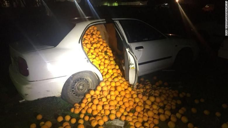 Police Pull Over Suspicious Cars Tons Of Oranges Come Tumbling