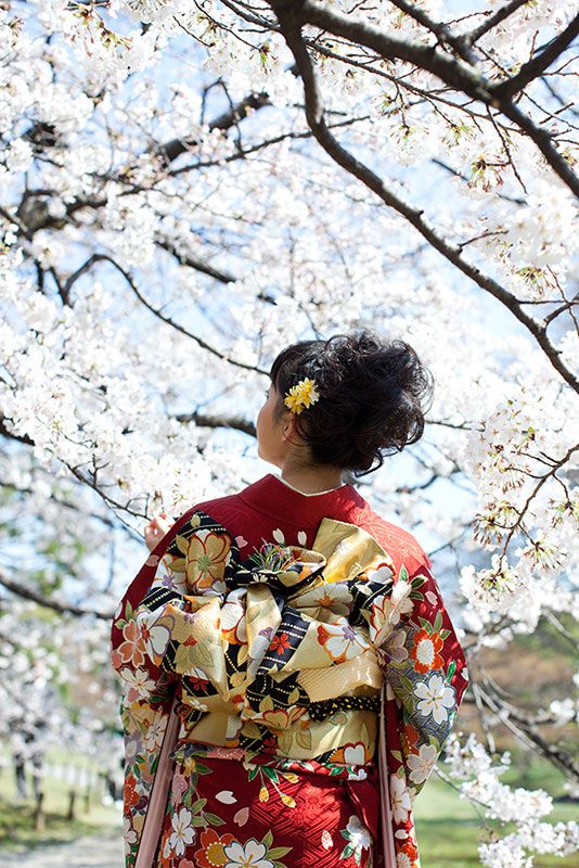 #Kyoto #Kimono #Sakura #Japan #Obi #Hurisode
