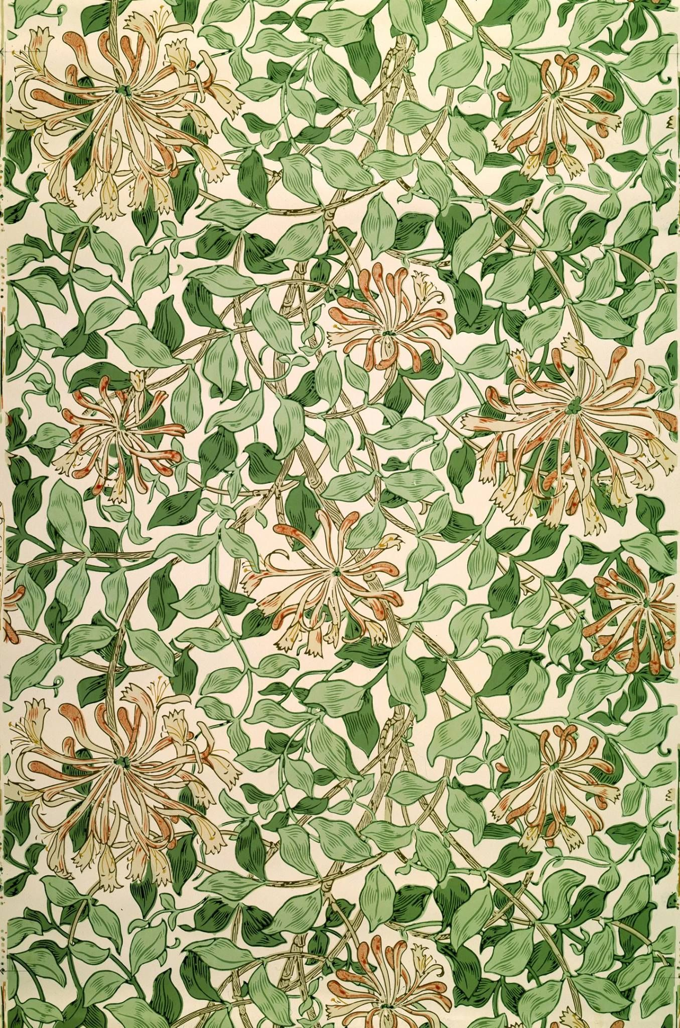 William Morris Honeysuckle design probably killed
