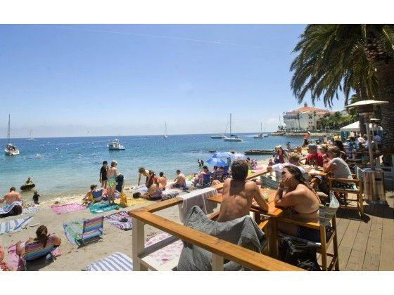 Cheapo Travel Ten Ways To Save On Santa Catalina Island Catalina Island Santa Catalina Island Santa Catalina