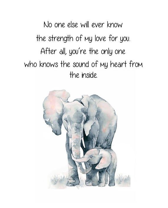 Elephant and Baby Elephant. No One Else Will Ever Know The Strength of My Love For You. Mother and Child Elephant Quote. Nursery Elephant
