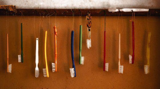 ¿Cada cuánto hay que cambiar el cepillo de dientes? | BuenaVida | AdriBosch's Magazine