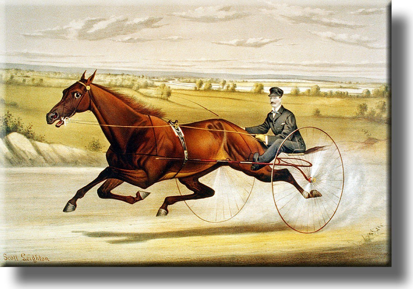 Horse Carriage Race Picture on Acrylic , Wall Art Décor, Ready to ...