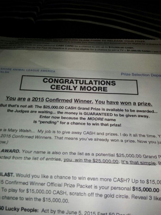 I won something from north shore animal league America  A prize from