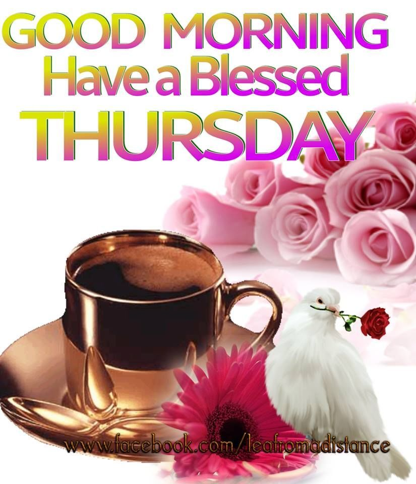 Thursday Quotes And Images Good Morning Have A Blessed Thursday Good Morning Thursday