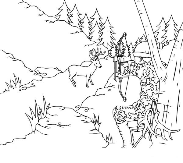 Hunter Shot A Deer With Arrow Coloring Page : Coloring Sky