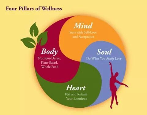 healthy body and wellness