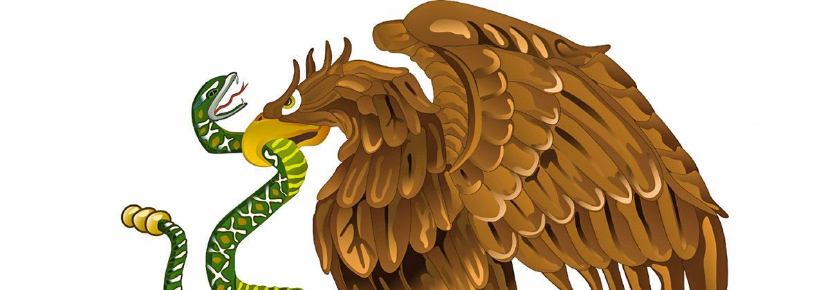 El guila real smbolo de la identidad mexicana  Las guilas