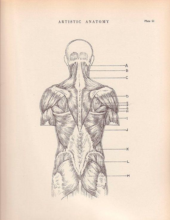 He D Love An Anatomy Poster Vintage Print Human Anatomy Illustration 1941 Wall Art By Agedpage 11 00 Anatomy Art Art Vintage Prints