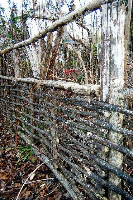 twig fence