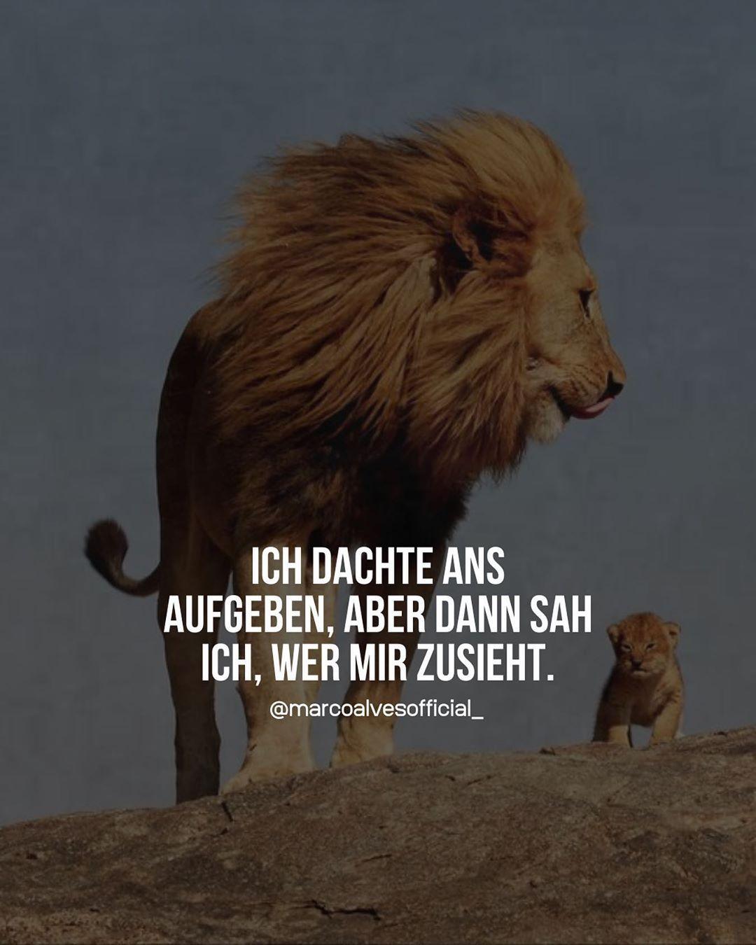 Photo of ᐅ 99 Beliebte Sprüche & Zitate #sprüche #zitate