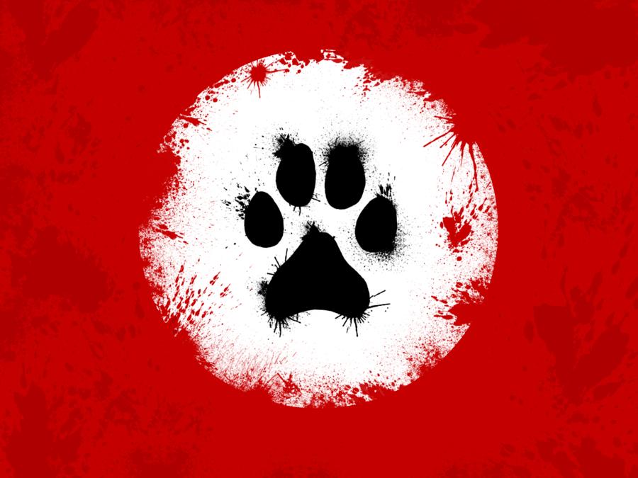 Fox Furry Wallpaper