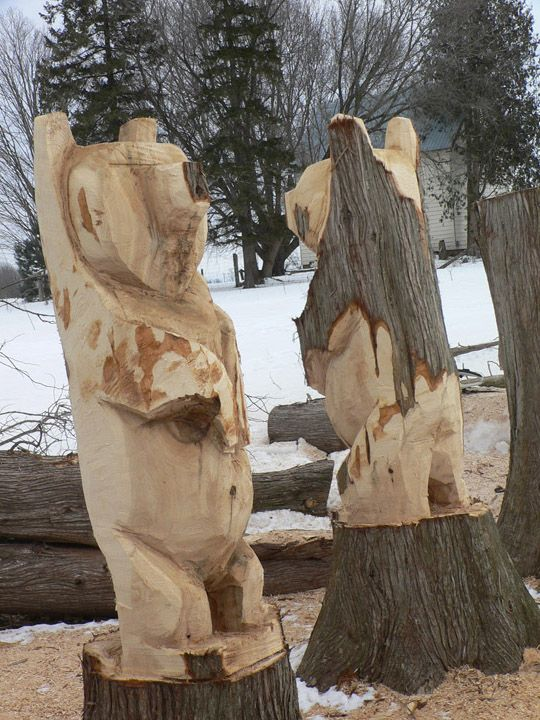 Brechin chainsaw carver Bert Harrington is turning a row of about 40 old cedar stumps into beautifully carved bears!