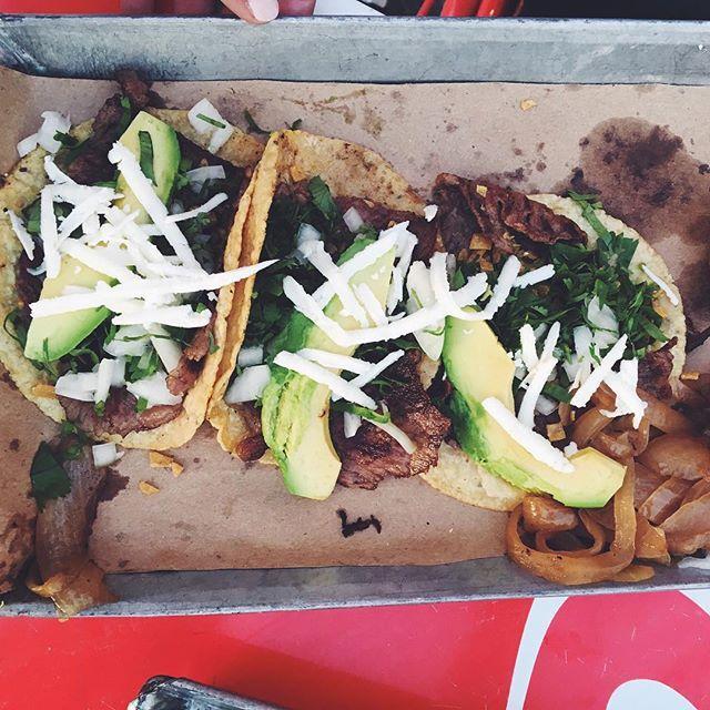 First authentic Mexican tacos |tacos de res: queso panela + avocado + cilantro| #mexican #mexicantacos #tacos #authentictacos #tacosderes #avocado #mexico #mty #comidamexicana #monterrey #taqueria