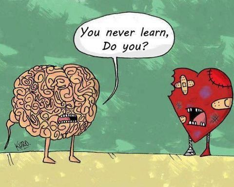 The Battle Between Heart And Mind Stupid Heart Humor Quotes