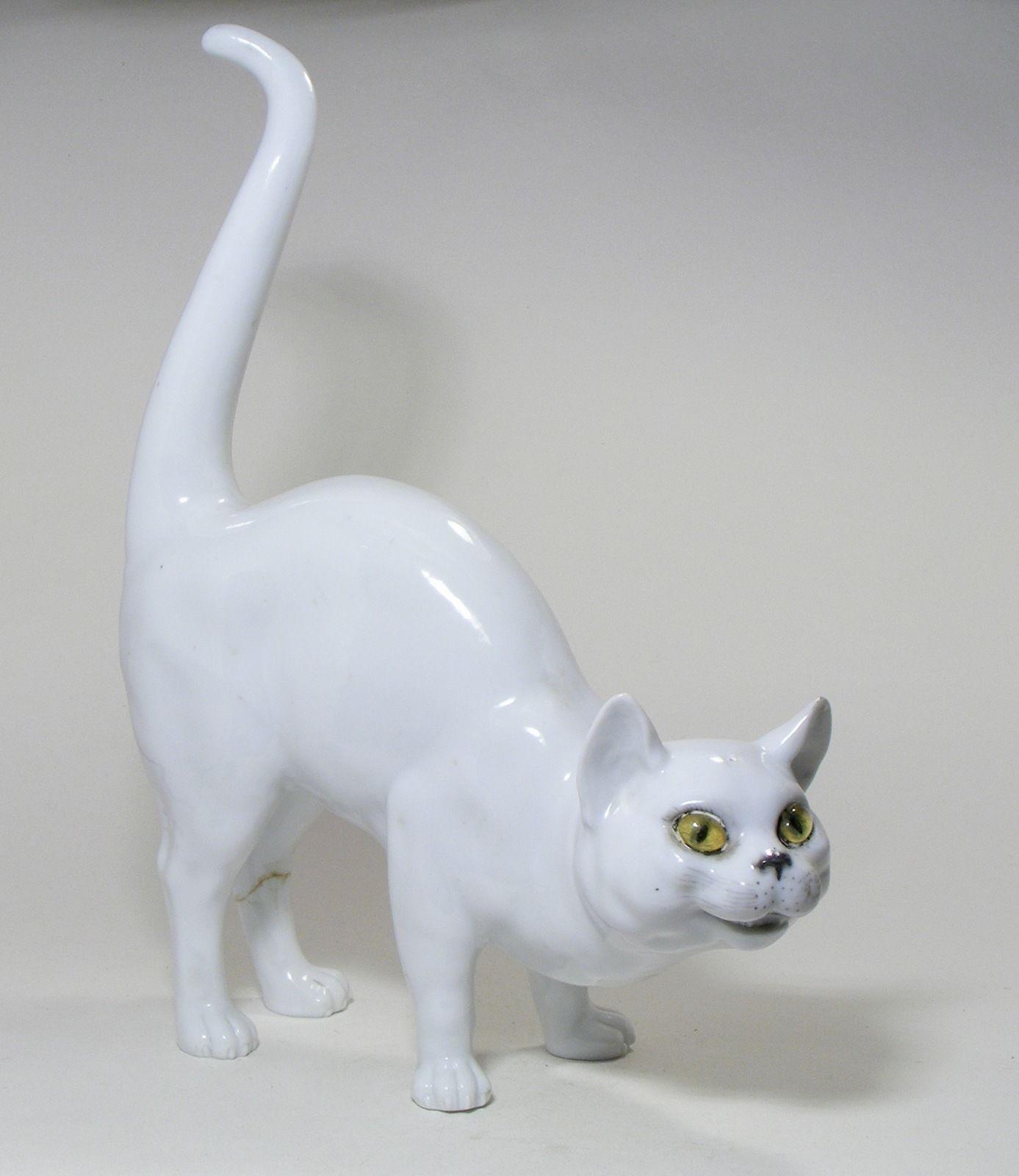 Кот с стеклянными глазами
