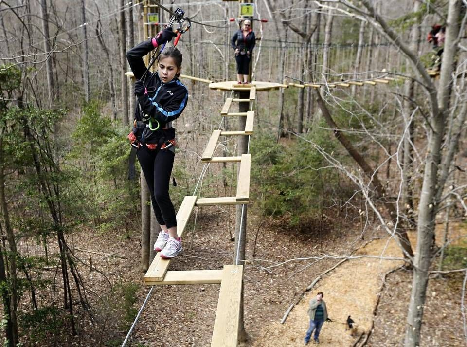Treetops Adventure Course Complete With Zip Line Coming To Swope Park Ziplining Parks Department County Park