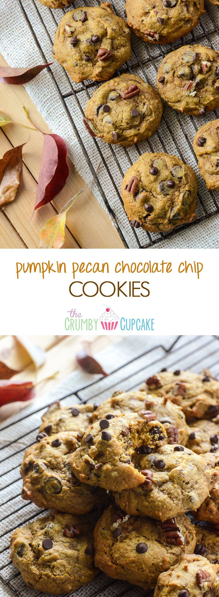 Pumpkin Pecan Chocolate Chip Cookies | A soft, cakey fall version of everyone's favorite cookie, packed with pumpkin & spice flavors! You won't be able to stop at one!