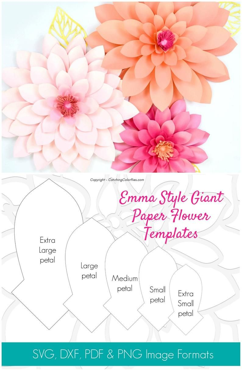 Giant Paper Dahlia Wall Flower Template Paper Flower Wall Etsy Diy Flower Template Paper Flower Patterns Free Paper Flower Templates