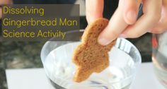 Dissolving Gingerbread Man Science Activity